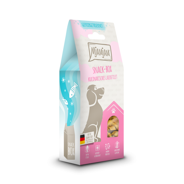 MjAMjAM - Snackbox - kulinarisches Lachsfilet